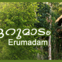 tree house banner